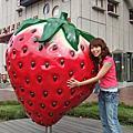 國慶苗栗行★花露花園+草莓文化館
