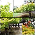 120829京都清水寺-祇園-平安神宮-二条城-晴明神社-金閣寺-四条