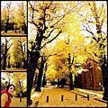 20131126日本(日式庭園-東大-神宮外苑-相葉家-東京鐵塔車站)