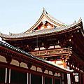 和歌山城,東大寺 游泳同心會日本旅遊