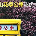 2018陽明山花季公車影像紀錄