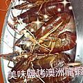 澳洲龍蝦料理-鹽烤澳洲龍蝦*龍蝦帝國