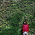 <2011十一月>台北市華山藝文特區