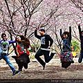 <2013二月>一天衝武陵.櫻花依然美麗
