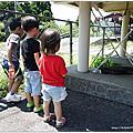 【九州親子行】從立野站出發到阿蘇站♥阿蘇男兒號Asoboy(特急あそぼーい!101号)初體驗