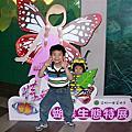 20110612陽明山蝴蝶季