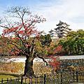 2009 Q4 日本出差記行-奈良.姬路.神戶