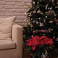 聖誕節2011.12.25