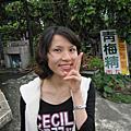 20101113-14 嘉義走走