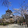 2012/4/8 JR PASS,跟著櫻花去旅行~Day6 四大國寶城最後一彈~犬山城