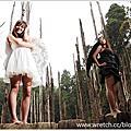 ●忘憂森林