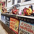 印度 那些充滿牛的大街小巷