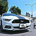 2019.01.11 FORD MUSTANG