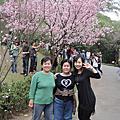 2010/03/01 台灣陽明山賞花趣