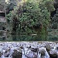 秋遊杉林溪