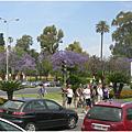 2008.05.03 Sevilla 西班牙