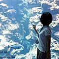 20131109-10夜宿海生館之旅