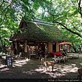 日本奈良 水谷茶屋 若草山 手向山八幡宮