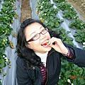 070223苗栗大湖採草莓兩日遊