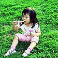 台南安平古堡半日遊2012.09.18
