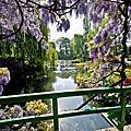 日本足利花園.[可當桌布]