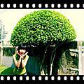 2008.5.17~台南外拍(女王是MD)