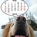 2013可愛肉圓小月曆
