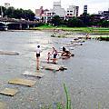 【日本】<關西>京都。鴨川跳烏龜