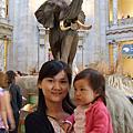 Smithsonian 之 自然歷史博物館