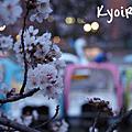 - 2013。根津神社、上野公園 -