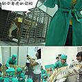 990825開心動物園