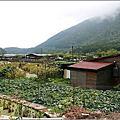 98.8.1竹子湖