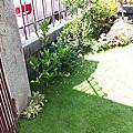 7坪簡易庭園