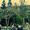 叮咚叮咚!台灣大學上課去。