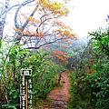 2013台灣山毛櫸步道