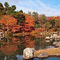 WH Day 237 京都嵐山賞楓,高台寺夜楓
