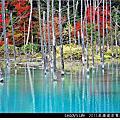 2011北海道自駕遊