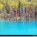 Day2 青的池