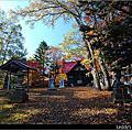 Day5 阿寒湖神社、愛努村落