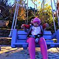 1/22/2009   清境瑪格麗特花園