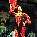 迷人的佛朗明哥舞Flamenco