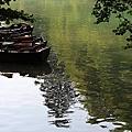牛刀小試的十六湖國家公園