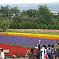 北海道--美瑛 & 富良野