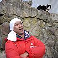 201004〝大腳走天下〞日本宮城用撲滿捕魚的貓島