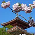 2008日本大阪DAY3