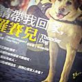 Takashi 10/1 台灣遊
