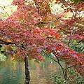 2007紅葉狩---大原三千院、南禪寺、永觀堂