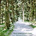 2011夏‧五峰旗瀑布+福山植物園