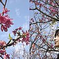 春天的花蕊03062006