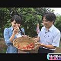 2012/07/26 第409集 楊梅養生